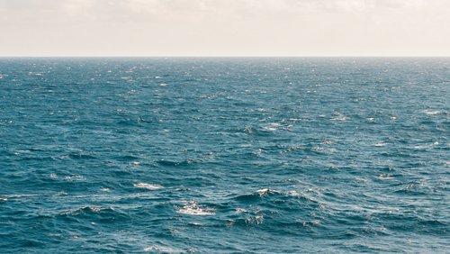 Environment - marine