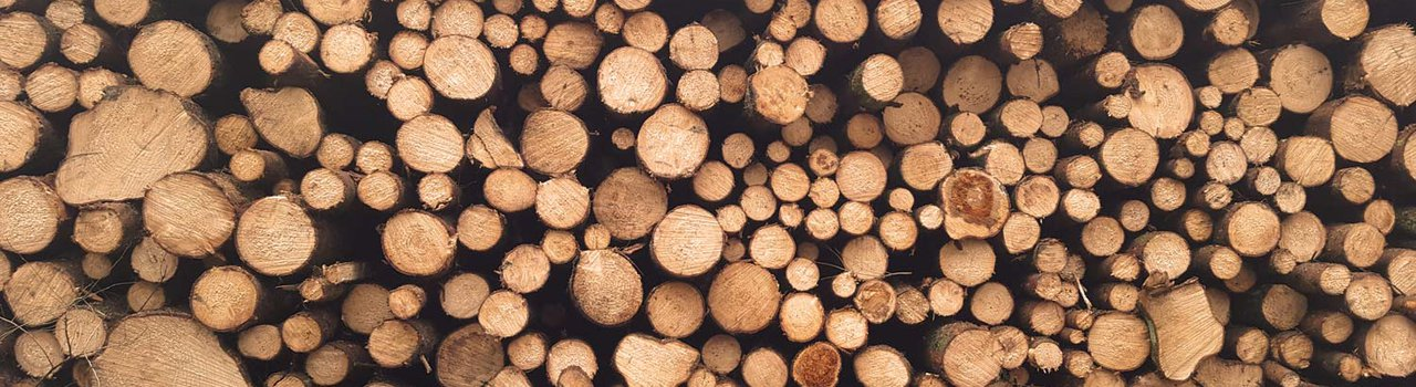 New Zealand Timber Design Society
